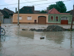 small flood in 2002 1